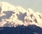 this is a picture of Mt Baker from my yard....sorry its not real clear, but you get the general idea. :)